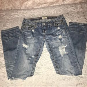 YNQ Totally Distressed Jeans